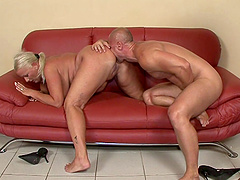 Chubby mature slut sucks him hard and gives up her asshole