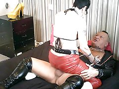 Spunk All Over My Bitch's Red PVC Pants